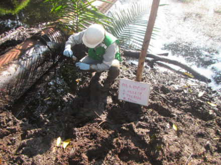 Personal de la OEFA ya recogió muestras de la zona para el análisis de laboratorio. Fotografía de OEFA.