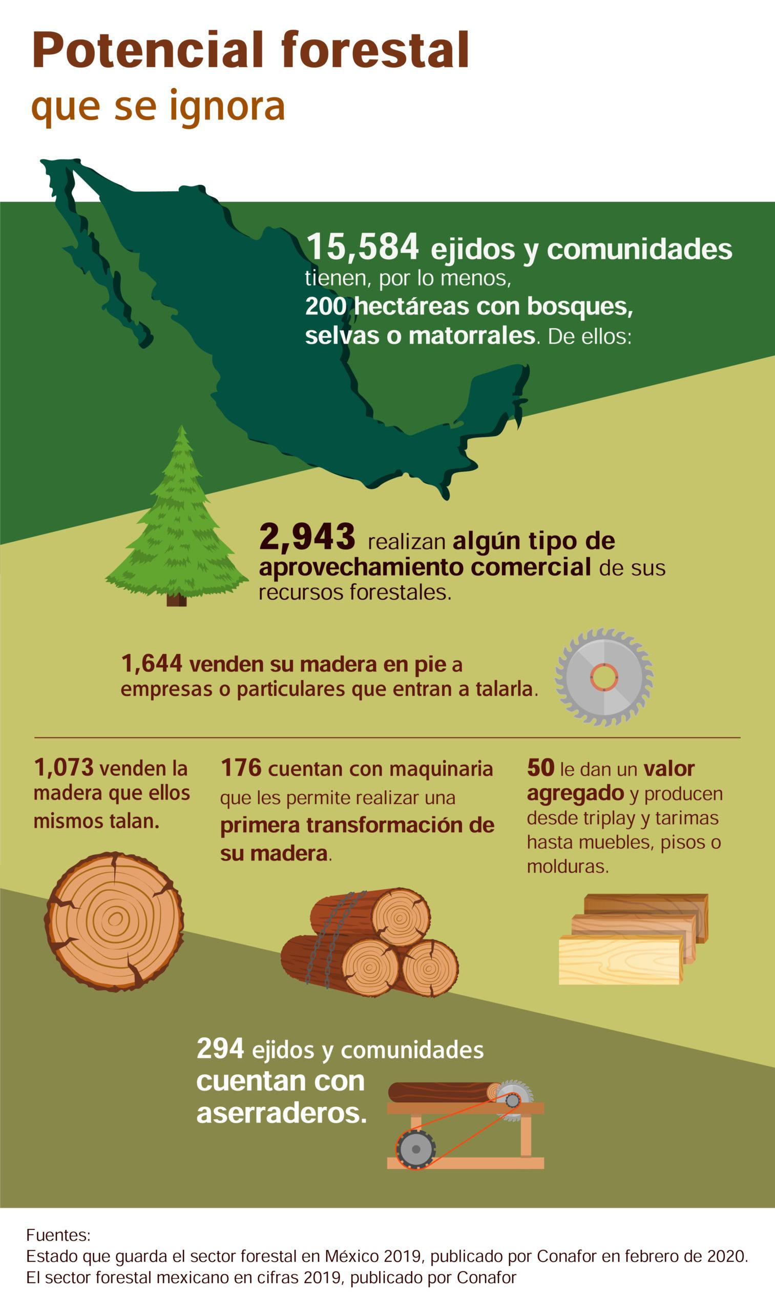 Infografía-manejo forestal-México